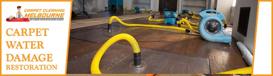 Carpet Water Damage Restoration Melbourne