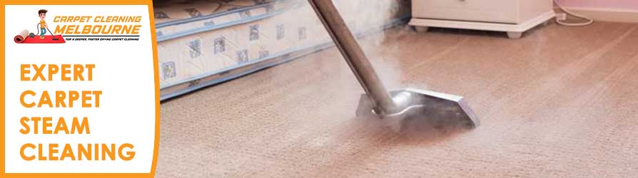 Expert Carpet Steam Cleaning Melbourne