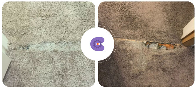 Carpet Damage Service